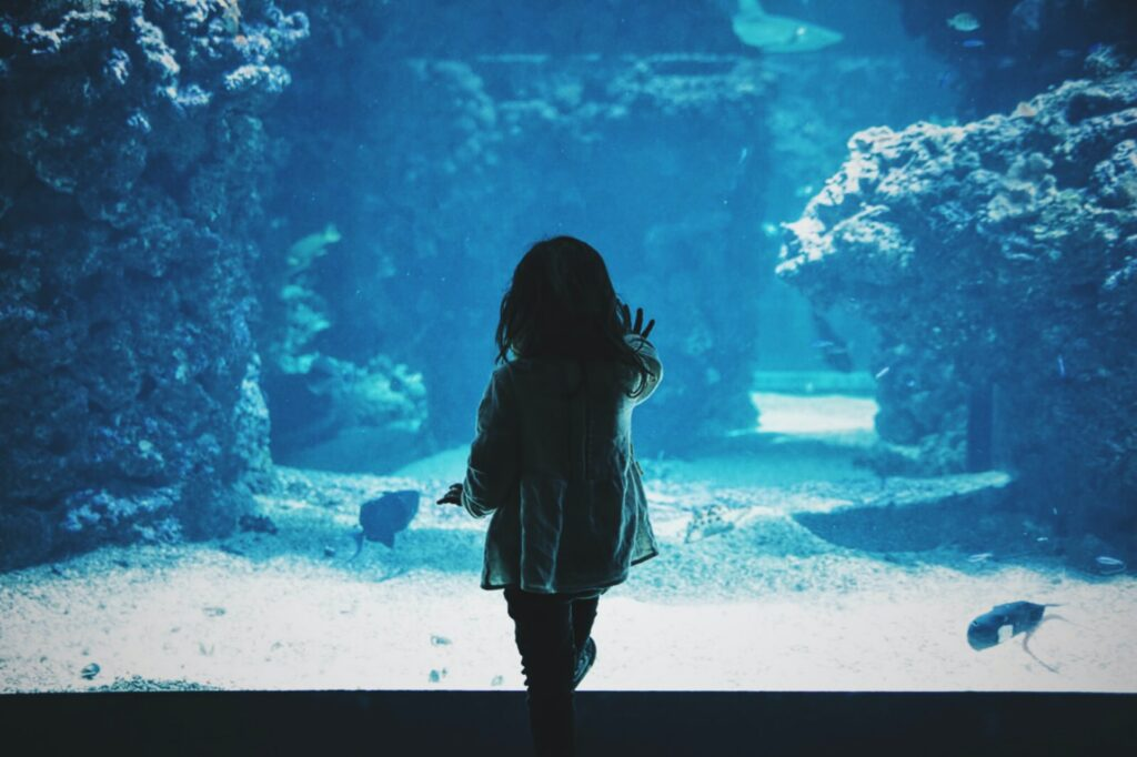 A little girl in front of an aquarium in Nice