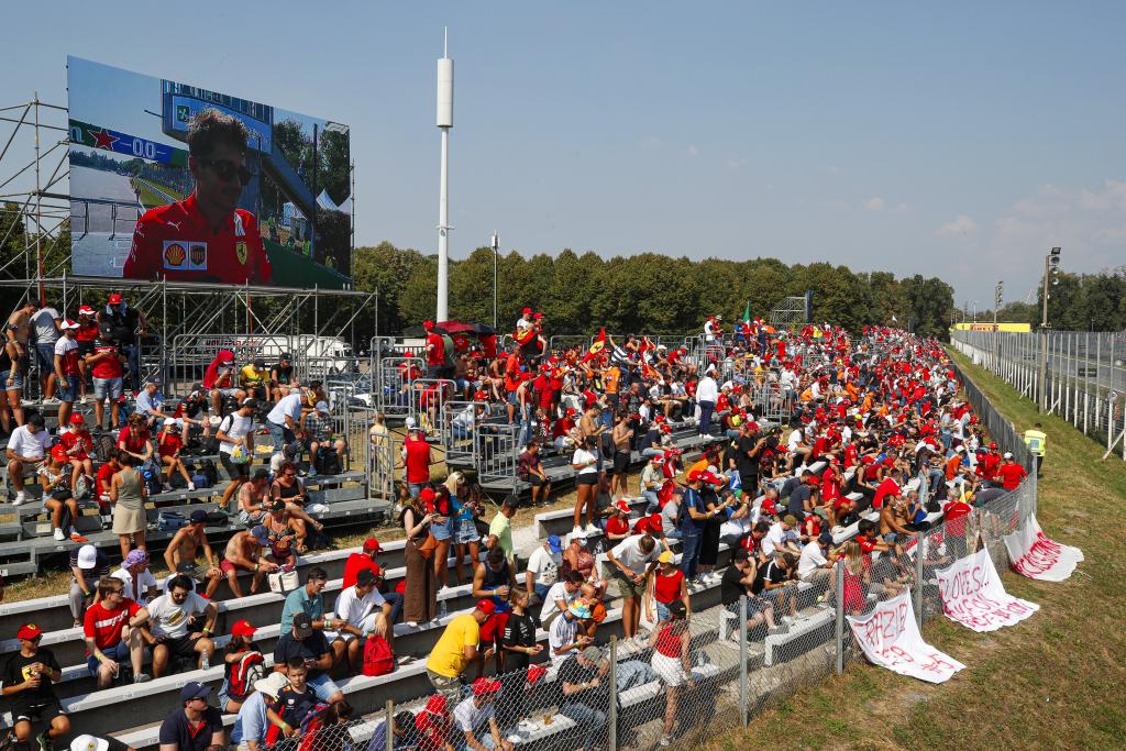 Fans at a Formula 1 race